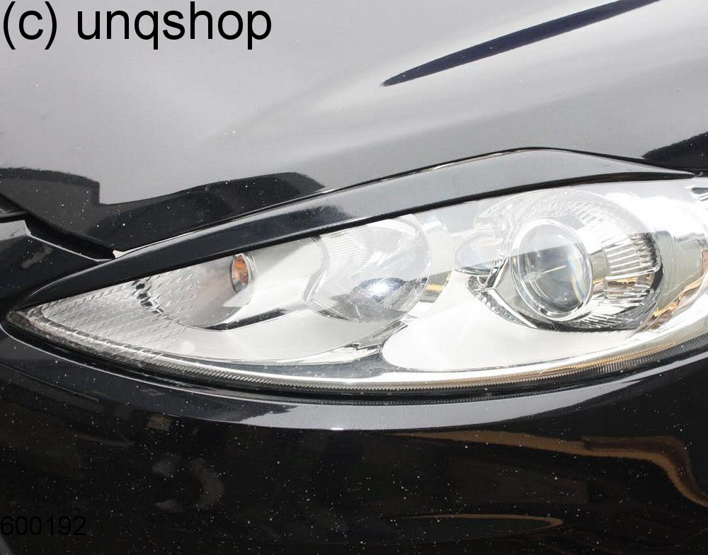 Eyebrows Ford Fiesta MK7 , only for Prefacelift