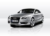 Audi A5  service 2