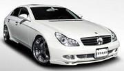 Mercedes CLS C219 service 15